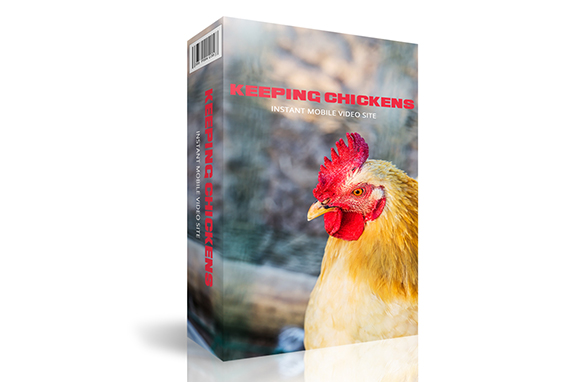 Keeping Chickens Instant Mobile Video Site
