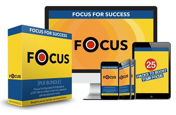 Focus For Success