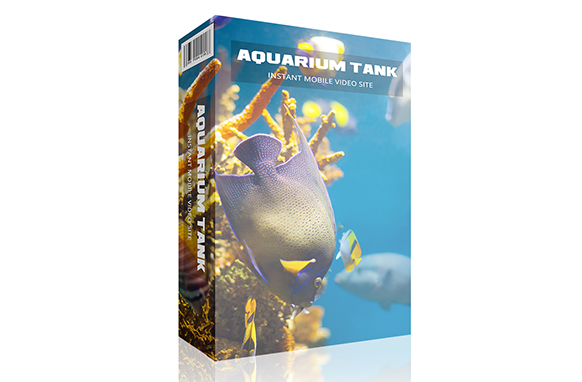 Aquarium Tank Instant Mobile Video Site