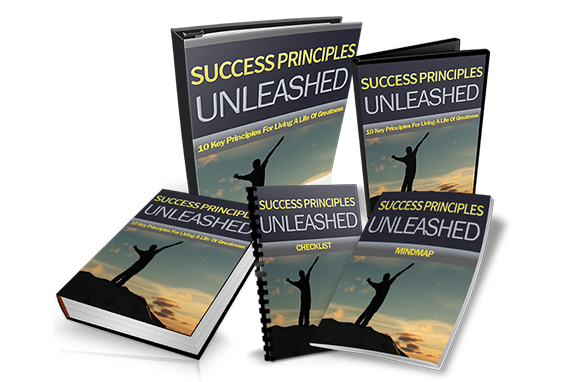 Success Principles Unleashed