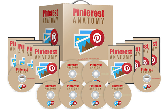 Pinterest Anatomy