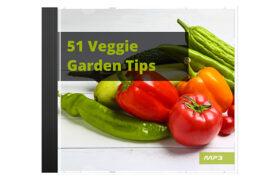 51 Veggie Garden Tips Audio Book Plus Ebook