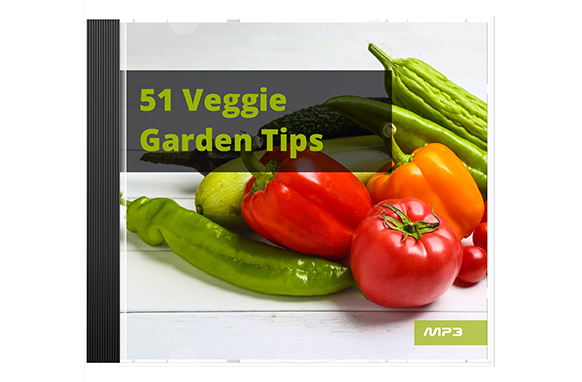 51 Veggie Garden Tips Audio Book Plus Ebook