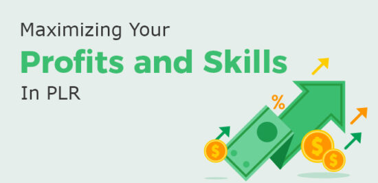 Maximizing Your Profits and Skills In PLR