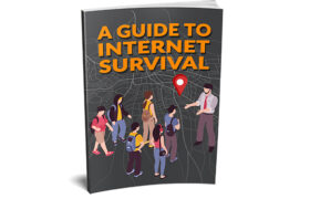 A Guide To Internet Survival