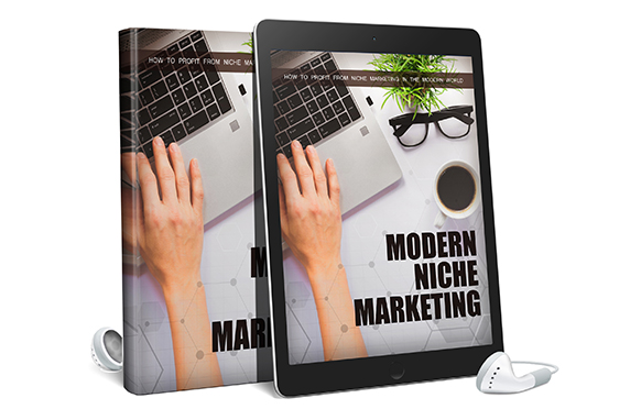 Modern Niche Marketing AudioBook and Ebook
