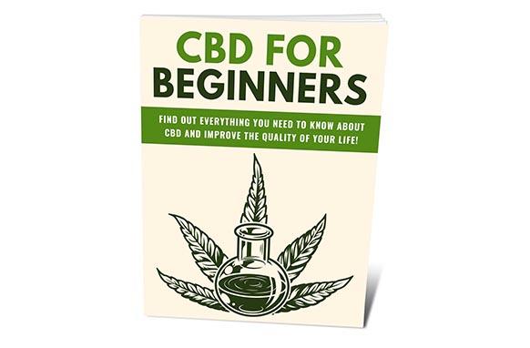 CBD For Beginners