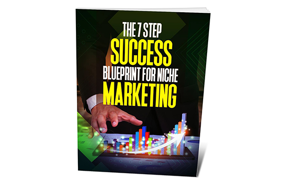 The 7 Step Success Blueprint For Niche Marketing