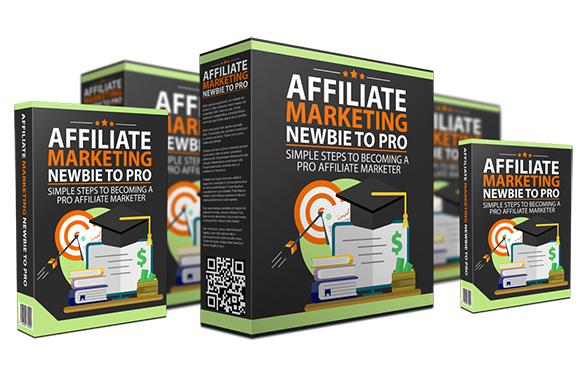 Affiliate Marketing Newbie To Pro